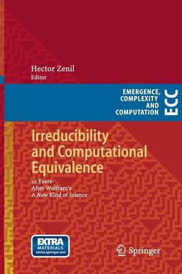Irreducibility and Computational Equivalence: 10 Years After Wolfram's A New Kind of Science - Emergence, Complexity and Computation 2 (Paperback)