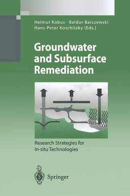 Groundwater and Subsurface Remediation: Research Strategies for In-situ Technologies - Environmental Science and Engineering (Paperback)