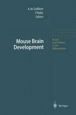 Mouse Brain Development - Results and Problems in Cell Differentiation 30 (Paperback)