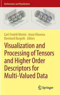 Visualization and Processing of Tensors and Higher Order Descriptors for Multi-Valued Data - Mathematics and Visualization (Hardback)