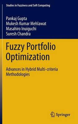Fuzzy Portfolio Optimization: Advances in Hybrid Multi-criteria Methodologies - Studies in Fuzziness and Soft Computing 316 (Hardback)
