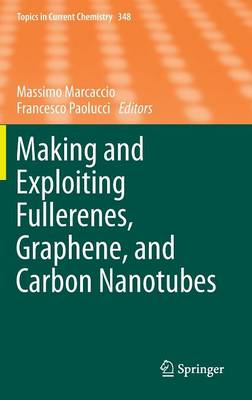 Making and Exploiting Fullerenes, Graphene, and Carbon Nanotubes - Topics in Current Chemistry 348 (Hardback)