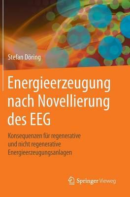 Energieerzeugung Nach Novellierung Des Eeg: Konsequenzen F r Regenerative Und Nicht Regenerative Energieerzeugungsanlagen (Hardback)