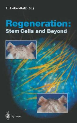 Regeneration: Stem Cells and Beyond - Current Topics in Microbiology and Immunology 280 (Paperback)