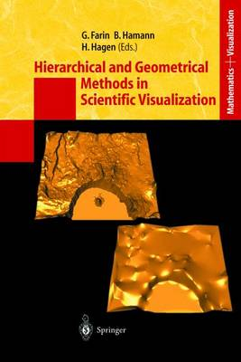 Hierarchical and Geometrical Methods in Scientific Visualization - Mathematics and Visualization (Paperback)