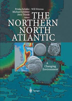 The Northern North Atlantic: A Changing Environment (Paperback)