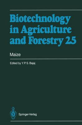 Maize - Biotechnology in Agriculture and Forestry 25 (Paperback)