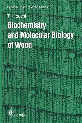 Biochemistry and Molecular Biology of Wood - Springer Series in Wood Science (Paperback)