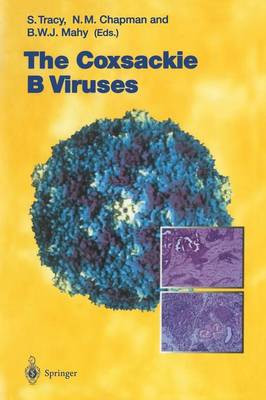 The Coxsackie B Viruses - Current Topics in Microbiology and Immunology 223 (Paperback)