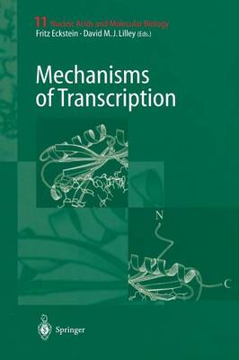 Mechanisms of Transcription - Nucleic Acids and Molecular Biology 11 (Paperback)