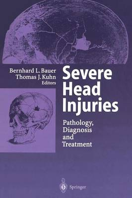 Severe Head Injuries: Pathology, Diagnosis and Treatment (Paperback)
