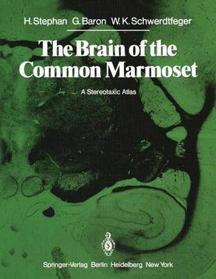 The Brain of the Common Marmoset (Callithrix jacchus): A Stereotaxic Atlas (Paperback)