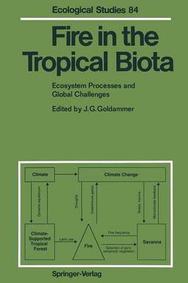 Fire in the Tropical Biota: Ecosystem Processes and Global Challenges - Ecological Studies 84 (Paperback)