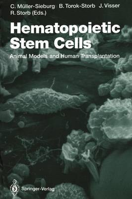 Hematopoietic Stem Cells: Animal Models and Human Transplantation - Current Topics in Microbiology and Immunology 177 (Paperback)