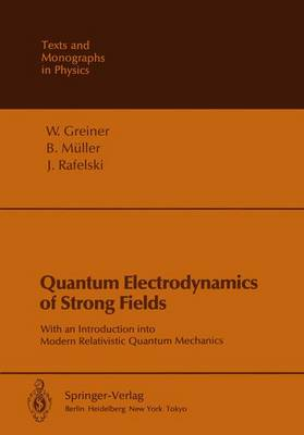 Quantum Electrodynamics of Strong Fields: With an Introduction into Modern Relativistic Quantum Mechanics - Theoretical and Mathematical Physics (Paperback)