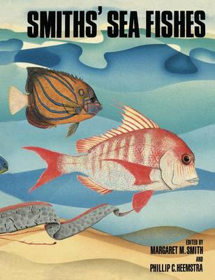 Smiths' Sea Fishes (Paperback)