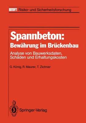 Spannbeton: Bewahrung im Bruckenbau - Bmft - Risiko- und Sicherheitsforschung (Paperback)