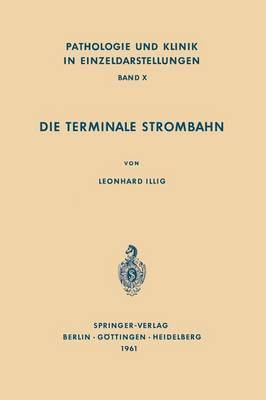 Die Terminale Strombahn: Capillarbett Und Mikrozirkulation - Pathologie Und Klink in Einzeldarstellungen 10 (Paperback)