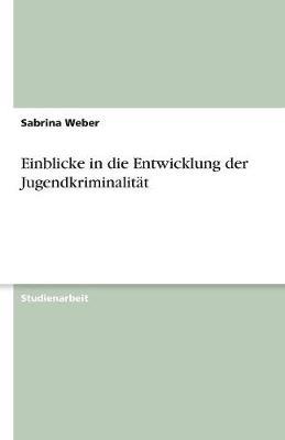 Einblicke in Die Entwicklung Der Jugendkriminalitat (Paperback)