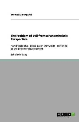 The Problem of Evil from a Panentheistic Perspective (Paperback)