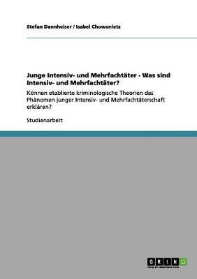 Junge Intensiv- Und Mehrfachtater - Was Sind Intensiv- Und Mehrfachtater? (Paperback)