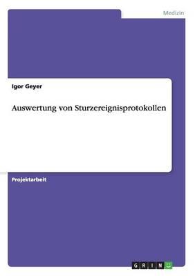 Auswertung Von Sturzereignisprotokollen (Paperback)