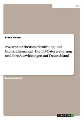 Zwischen Arbeitsmarktoffnung Und Fachkraftemangel: Die Eu-Osterweiterung Und Ihre Auswirkungen Auf Deutschland (Paperback)
