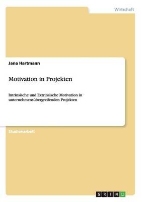 Motivation in Projekten (Paperback)