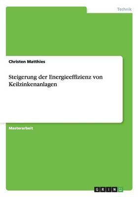 Steigerung Der Energieeffizienz Von Keilzinkenanlagen (Paperback)