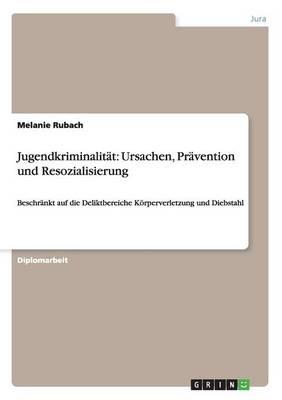 Jugendkriminalitat: Ursachen, Pravention Und Resozialisierung (Paperback)