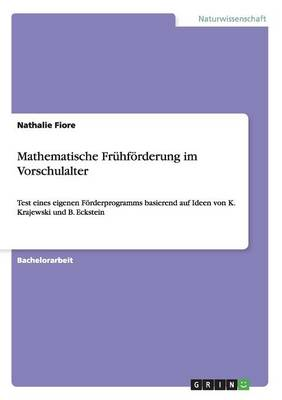 Mathematische Fruhforderung Im Vorschulalter (Paperback)