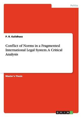 Conflict of Norms in a Fragmented International Legal System. a Critical Analysis (Paperback)