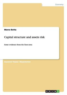 Capital Structure and Assets Risk (Paperback)