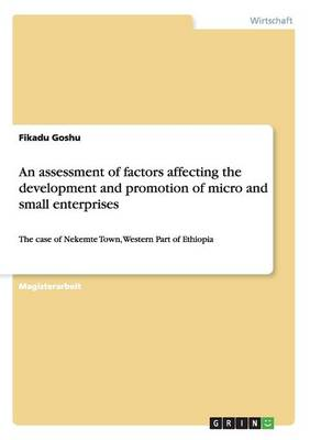 An Assessment of Factors Affecting the Development and Promotion of Micro and Small Enterprises (Paperback)