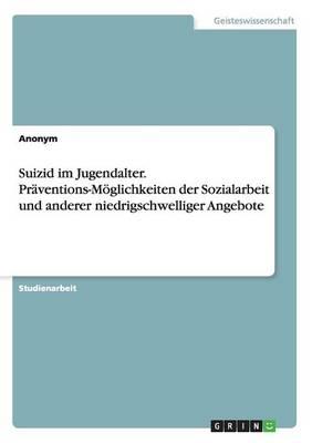 Suizid Im Jugendalter. Praventions-Moglichkeiten Der Sozialarbeit Und Anderer Niedrigschwelliger Angebote (Paperback)
