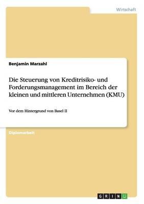 Die Steuerung Von Kreditrisiko- Und Forderungsmanagement Im Bereich Der Kleinen Und Mittleren Unternehmen (Kmu) (Paperback)
