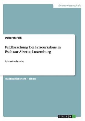 Feldforschung Bei Friseursalons in Esch-Sur-Alzette, Luxemburg (Paperback)