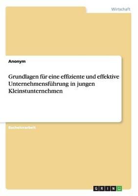 Grundlagen Fur Eine Effiziente Und Effektive Unternehmensfuhrung in Jungen Kleinstunternehmen (Paperback)