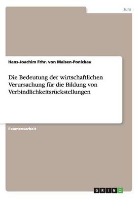 Die Bedeutung Der Wirtschaftlichen Verursachung Fur Die Bildung Von Verbindlichkeitsruckstellungen (Paperback)