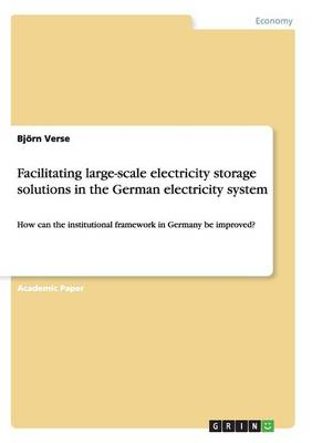 Facilitating Large-Scale Electricity Storage Solutions in the German Electricity System (Paperback)