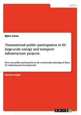 Transnational Public Participation in Eu Large-Scale Energy and Transport Infrastructure Projects (Paperback)
