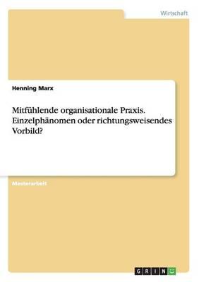 Mitfuhlende Organisationale Praxis. Einzelphanomen Oder Richtungsweisendes Vorbild? (Paperback)