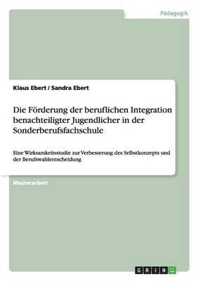 Die Forderung Der Beruflichen Integration Benachteiligter Jugendlicher in Der Sonderberufsfachschule (Paperback)