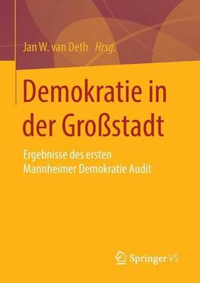 Demokratie in Der Grossstadt: Ergebnisse Des Ersten Mannheimer Demokratie Audit (Paperback)