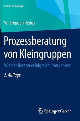 Prozessberatung Von Kleingruppen: Wie Der Berater Erfolgreich Interveniert - Edition Rosenberger (Hardback)