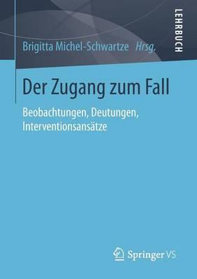 Der Zugang Zum Fall: Beobachtungen, Deutungen, Interventionsansatze (Paperback)