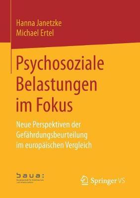 Psychosoziale Belastungen Im Fokus: Neue Perspektiven Der Gefahrdungsbeurteilung Im Europaischen Vergleich (Paperback)