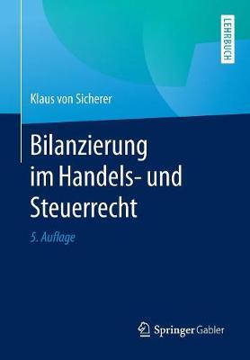 Bilanzierung Im Handels- Und Steuerrecht (Paperback)