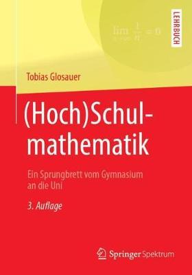 (hoch)Schulmathematik: Ein Sprungbrett Vom Gymnasium an Die Uni (Paperback)