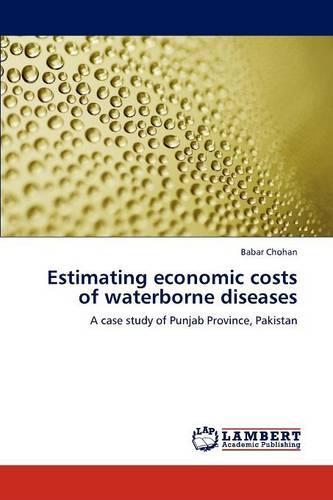 Estimating Economic Costs of Waterborne Diseases (Paperback)
